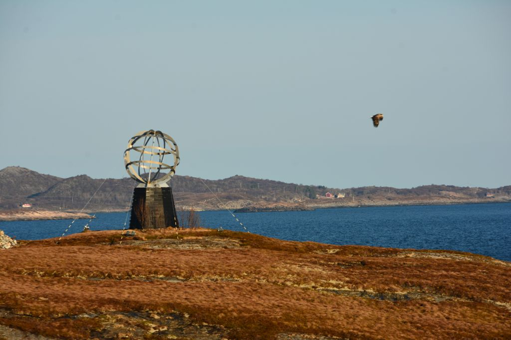Polarkreiskugel mit Seeadler
