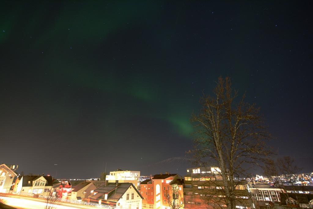 Polarlichter über dem Kongsparken.