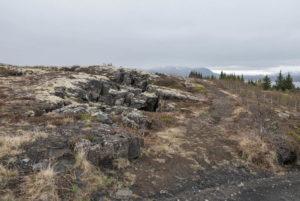 Der Island-Ponytrail zum Þingvellir