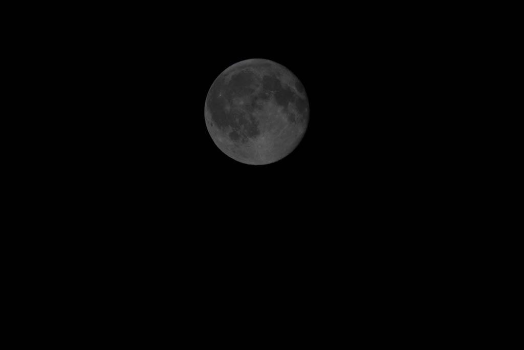 Der zu 98,9% beleuchtete Mond am Abend des 20. Juli 2016